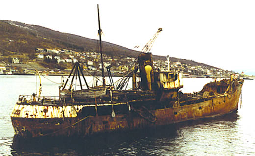 At Narvik, the whole wreck, seen from the side.